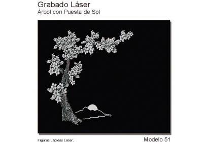 LASMOD51