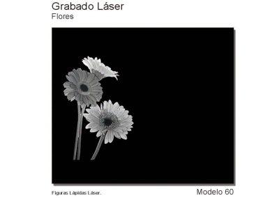 LASMOD60