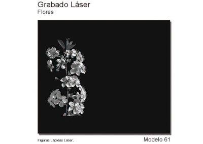 LASMOD61