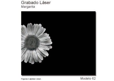 LASMOD62