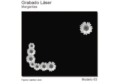 LASMOD63