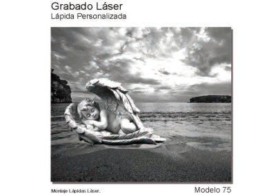 LASMOD75